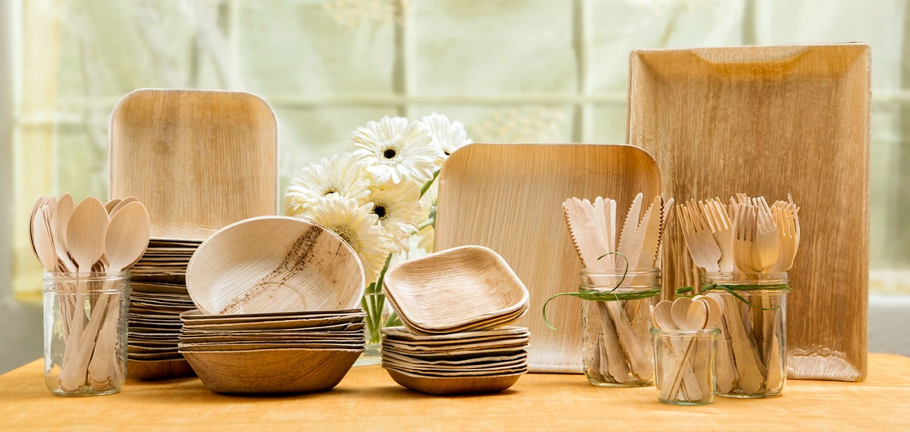 Biodegradable Plates and Spoons